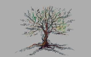 albero note